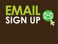 email_signup_3